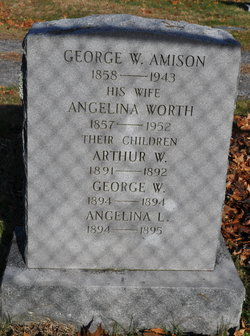 Angelina <I>Worth</I> Amison