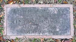 Walter White Anthony