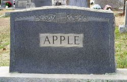 "Angeline V. ""Lina"" <I>Cobb</I> Apple"