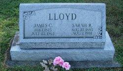 Sarah Rebecca <I>Hale</I> Lloyd