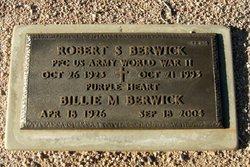 Robert S Berwick