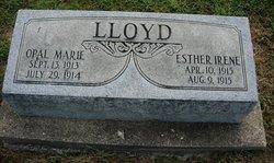 Esther Irene Lloyd