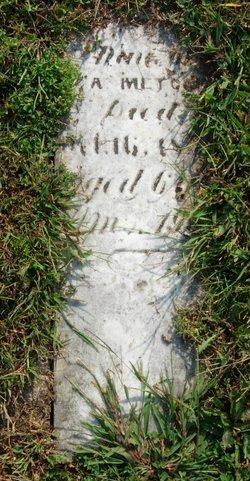 Rebecca A. Metcalfe
