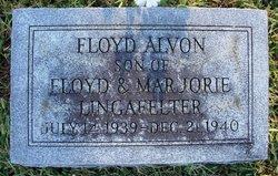 Floyd Alvon Lingafelter Jr.