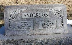 Lars J Anderson