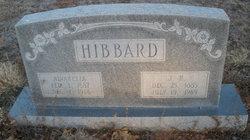 Amanda Alvaretta <I>Lovelace</I> Hibbard