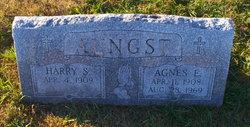 Agnes E <I>Shuey</I> Aungst
