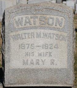Walter McClure Watson