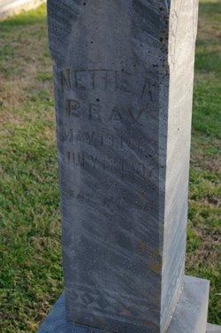Nettie A. <I>Moffitt</I> Bray