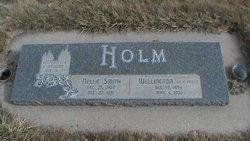 Wellington Holm