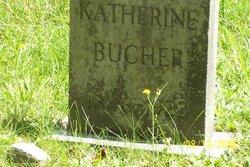 Catherine A <I>Perrigo</I> Bucher