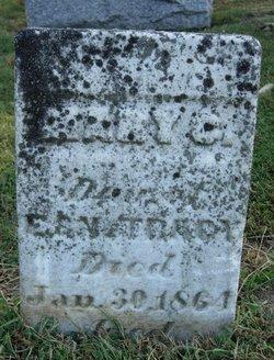 Mary C Tracy