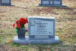 Michael W. Gurnsey