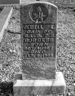 Jewell E Burgess