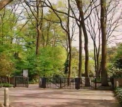 Waldfriedhof Bremen-Blumenthal
