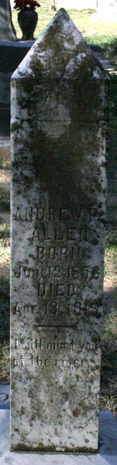 Andrew P Allen