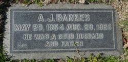 Andrew Jackson Barnes