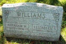 Elizabeth S Williams