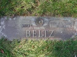 Ida Dorothy <I>Amstutz</I> Beltz