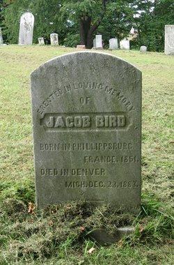 Jacob Bird