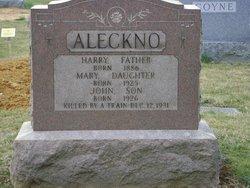 John Aleckno