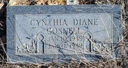 Cynthia Diane Gosnell