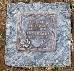 Andrew Alexander Breedlove