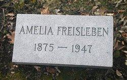 Amelia <I>Reach</I> Freisleben