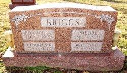 Pheobe A <I>Townsend</I> Briggs