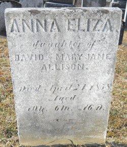 Anna Elizabeth Allison
