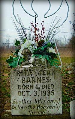 Rita Jean Barnes
