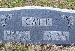 Charles W. Catt