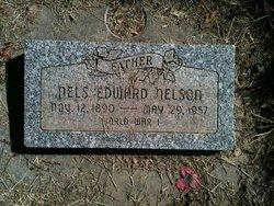 Nels Edward Nelson