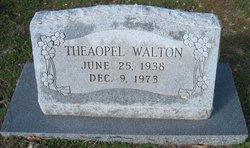 Theaopal <I>Ash</I> Walton
