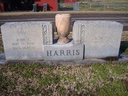 Agnes M. <I>Danner</I> Harris