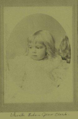 Laura G Clark