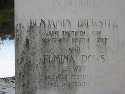 Elmina Hearsey <I>Dows</I> Brewster