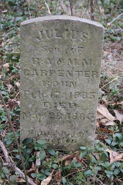 Julius Carpenter