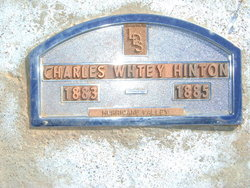 Charles W Hinton