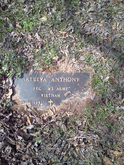Artleva Anthony