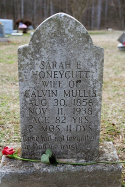 Sarah Eliza <I>Honeycutt</I> Mullis