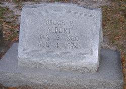 Bruce E. Albert