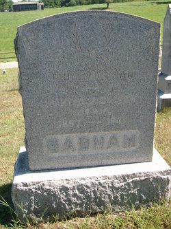 John T Basham