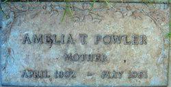 Amelia Teller <I>Crossman</I> Fowler