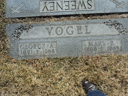 George A Vogel