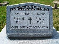 Ambrose C David