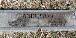 "Hannah Elizabeth ""Lizzie"" <I>Smith</I> Anderton"