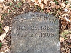 Alie Brewer