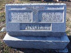 Mollie J Angel