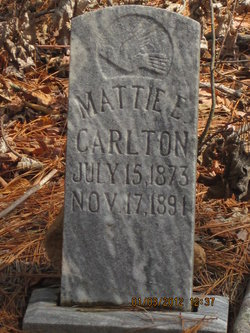 Mattie E Carlton